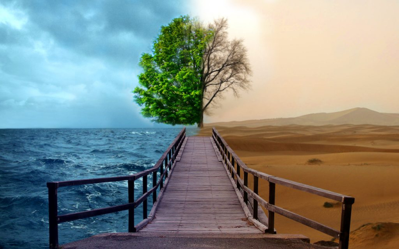 Climate-change-Environment_Project_01_by_moure-1024x640