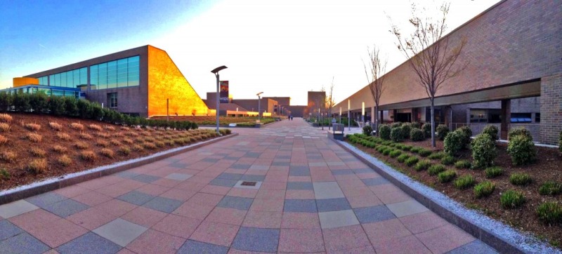 SUNY-Purchase-College-by-Andy-Pop--1024x463