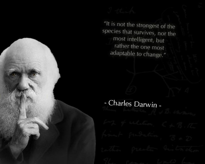 Darwin__s_tree_by_jhonnesouza-d4mmbbc