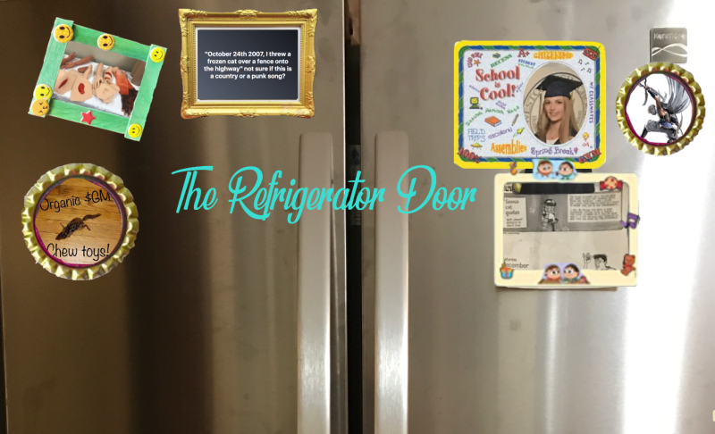 The Refrigerator Door