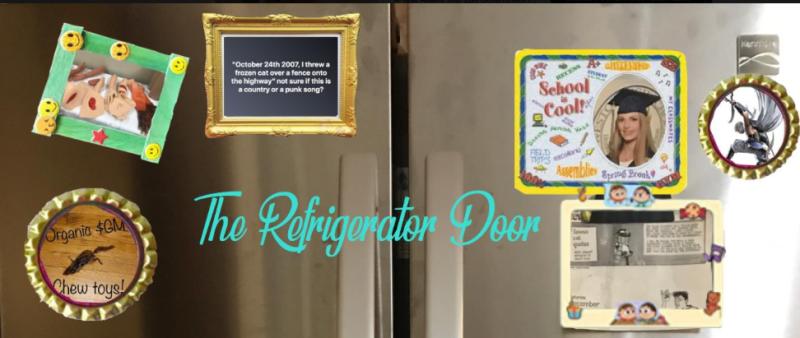 RefrigeratorDoor1