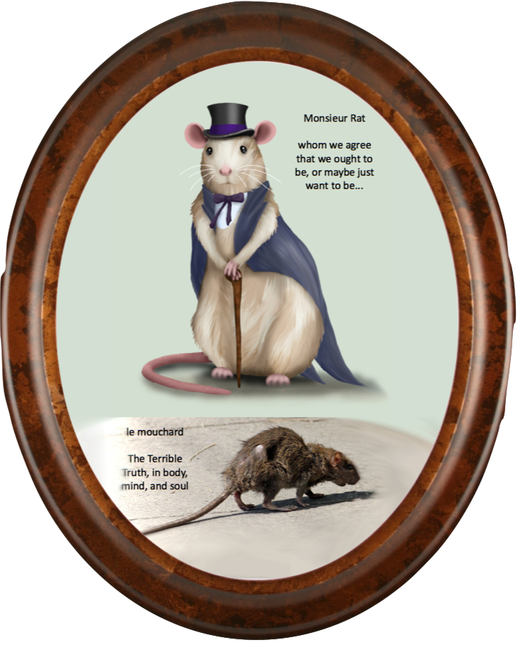 Monsieur Ratty in the mirror