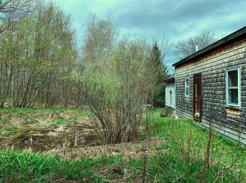 Sad old house